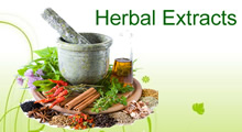 Plant and Herbal Extracts